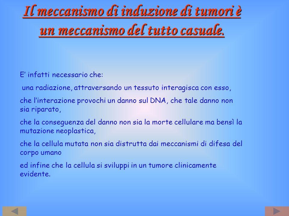 Il meccanismo di induzione di tumori è un meccanismo del tutto casuale.
