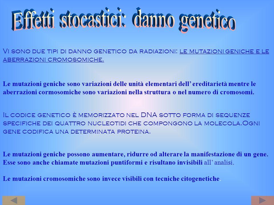 Effetti stocastici: danno genetico