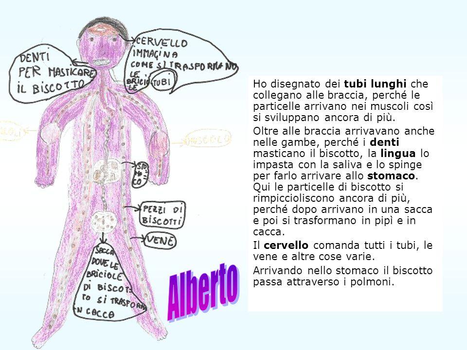 Ho disegnato dei tubi lunghi che collegano alle braccia, perché le particelle arrivano nei muscoli così si sviluppano ancora di più.
