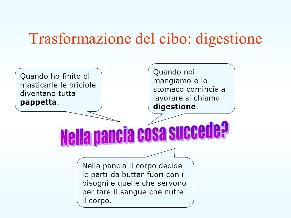 Trasformazione del cibo: digestione