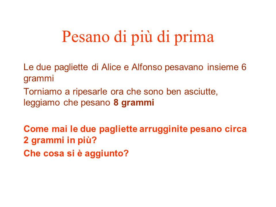 Pesano di più di prima Le due pagliette di Alice e Alfonso pesavano insieme 6 grammi.