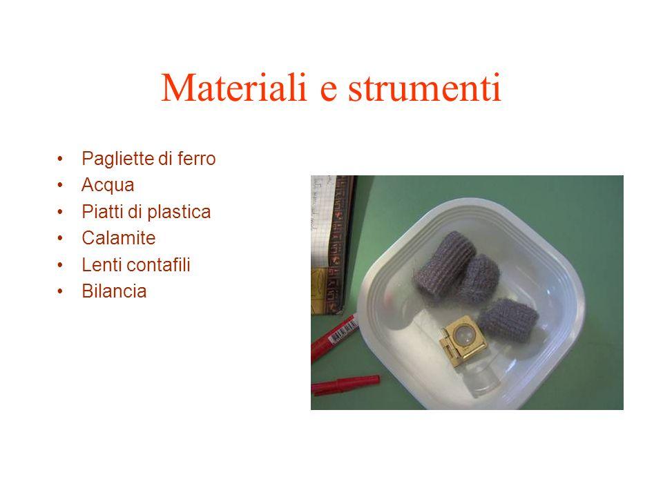 Materiali e strumenti Pagliette di ferro Acqua Piatti di plastica