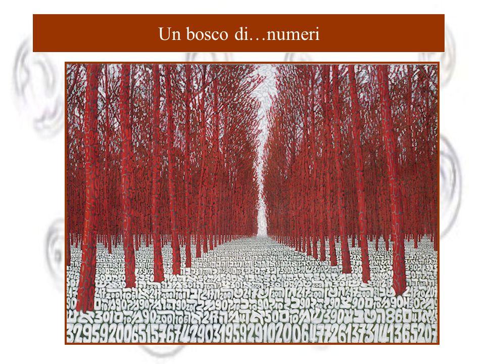 Un bosco di…numeri