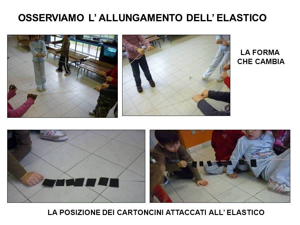 OSSERVIAMO L' ALLUNGAMENTO DELL' ELASTICO