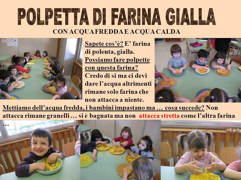 POLPETTA DI FARINA GIALLA