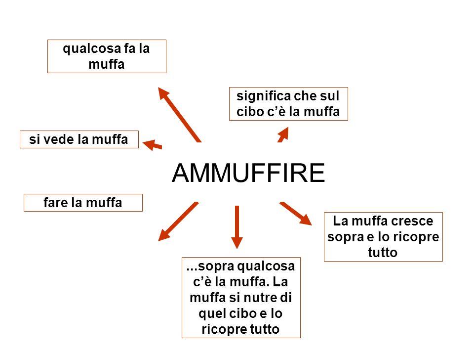 AMMUFFIRE qualcosa fa la muffa significa che sul cibo c'è la muffa