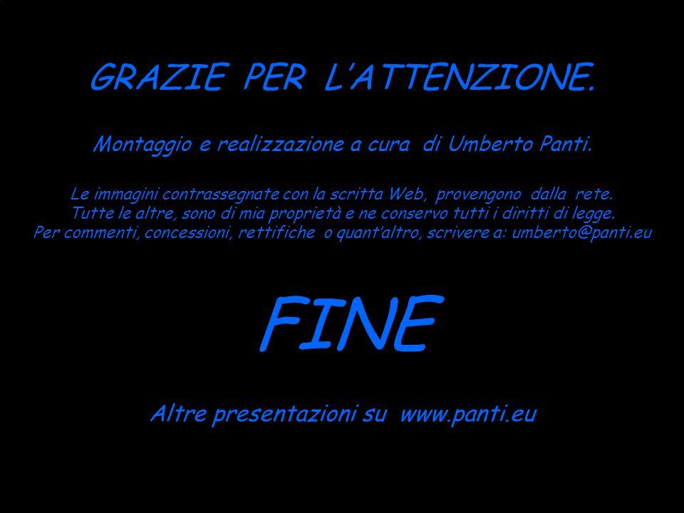 FINE GRAZIE PER L'ATTENZIONE. Altre presentazioni su www.panti.eu