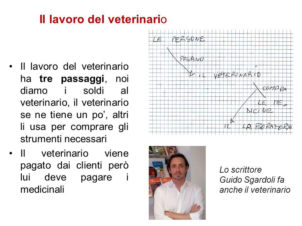 Il lavoro del veterinario
