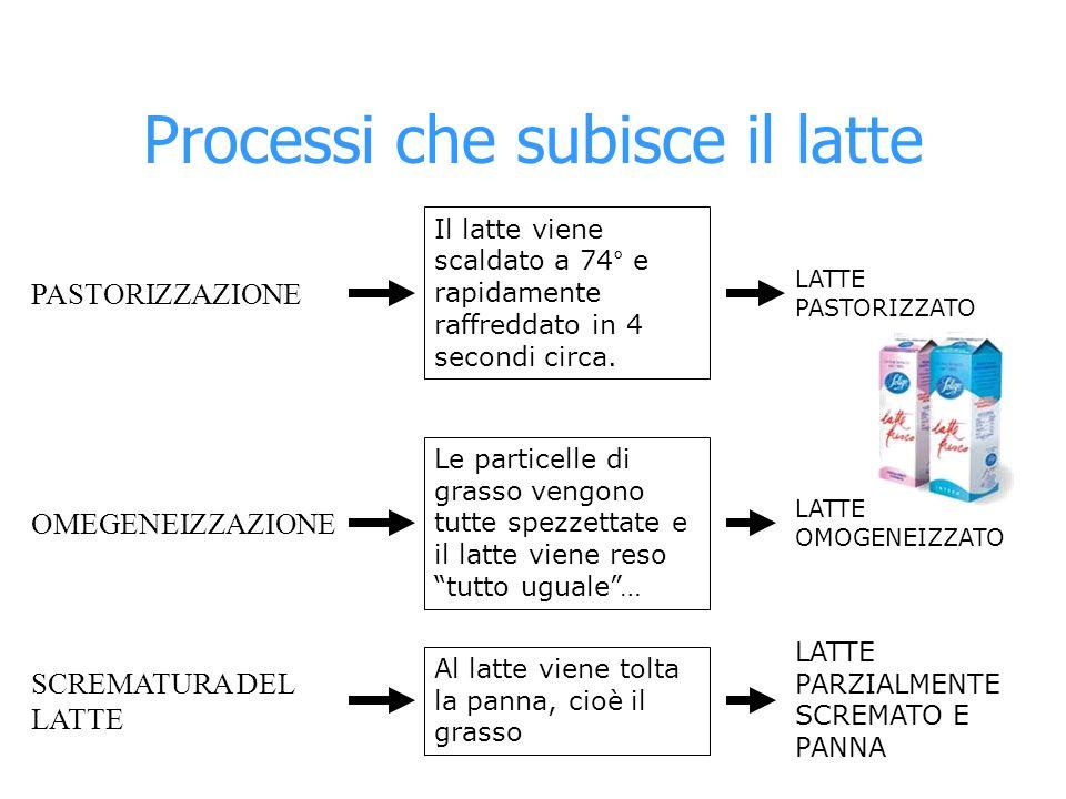 Processi che subisce il latte