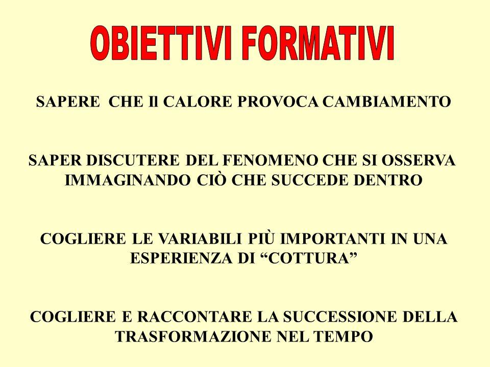 OBIETTIVI FORMATIVI SAPERE CHE Il CALORE PROVOCA CAMBIAMENTO