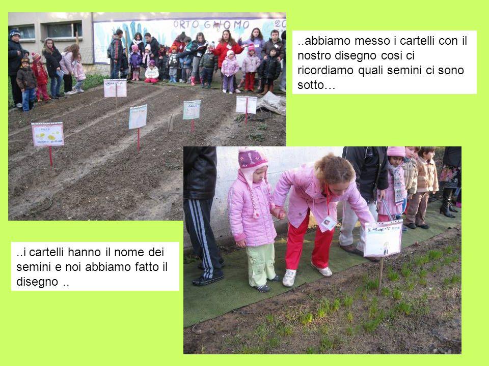 ..abbiamo messo i cartelli con il nostro disegno cosi ci ricordiamo quali semini ci sono sotto…