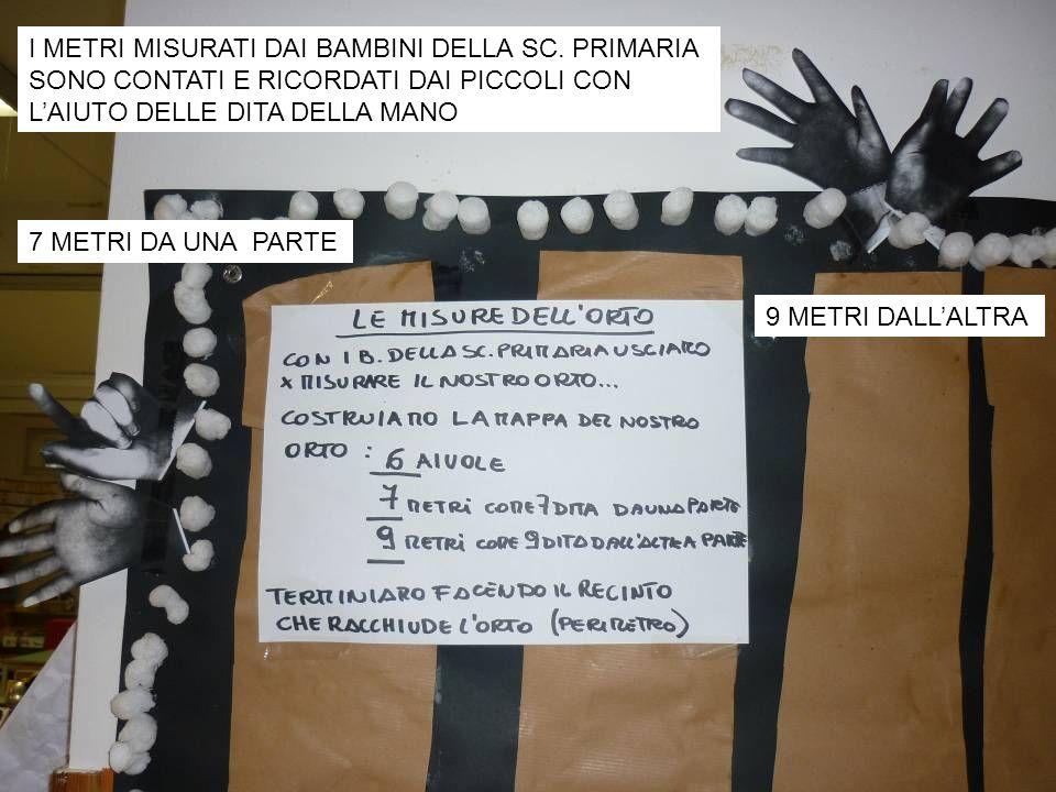 I METRI MISURATI DAI BAMBINI DELLA SC. PRIMARIA