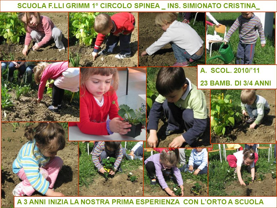 SCUOLA F.LLI GRIMM 1° CIRCOLO SPINEA _ INS. SIMIONATO CRISTINA_