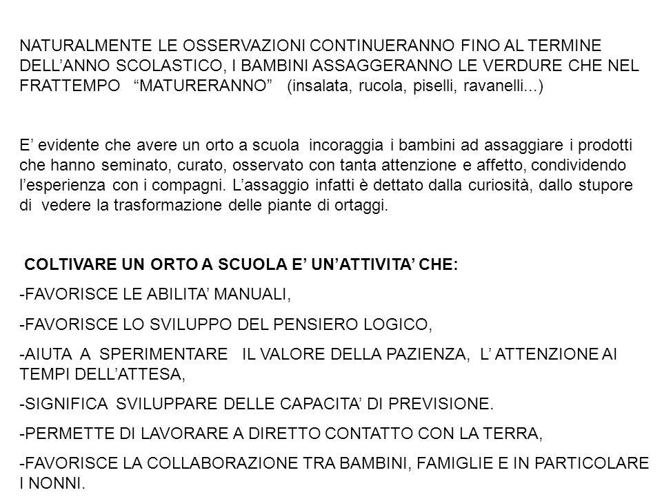 NATURALMENTE LE OSSERVAZIONI CONTINUERANNO FINO AL TERMINE DELL'ANNO SCOLASTICO, I BAMBINI ASSAGGERANNO LE VERDURE CHE NEL FRATTEMPO MATURERANNO (insalata, rucola, piselli, ravanelli...)