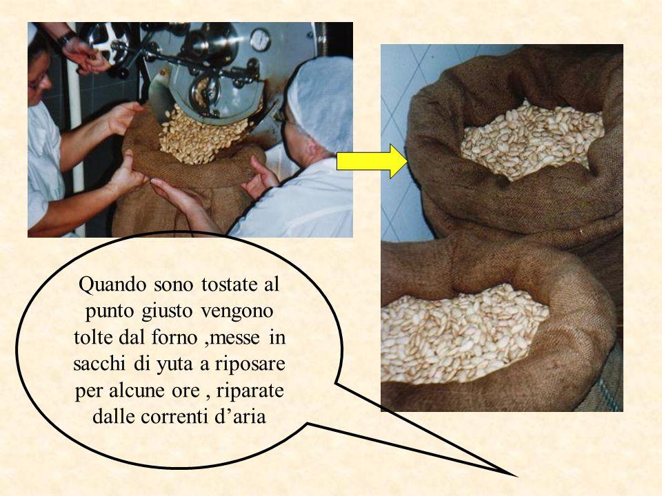 Quando sono tostate al punto giusto vengono tolte dal forno ,messe in sacchi di yuta a riposare per alcune ore , riparate dalle correnti d'aria