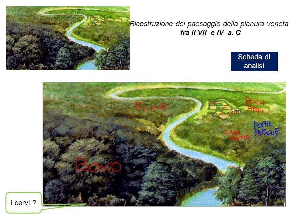 Ricostruzione del paesaggio della pianura veneta