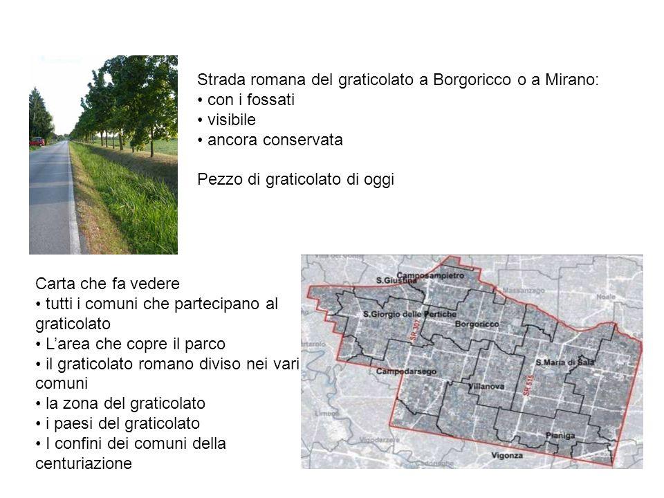 Strada romana del graticolato a Borgoricco o a Mirano: