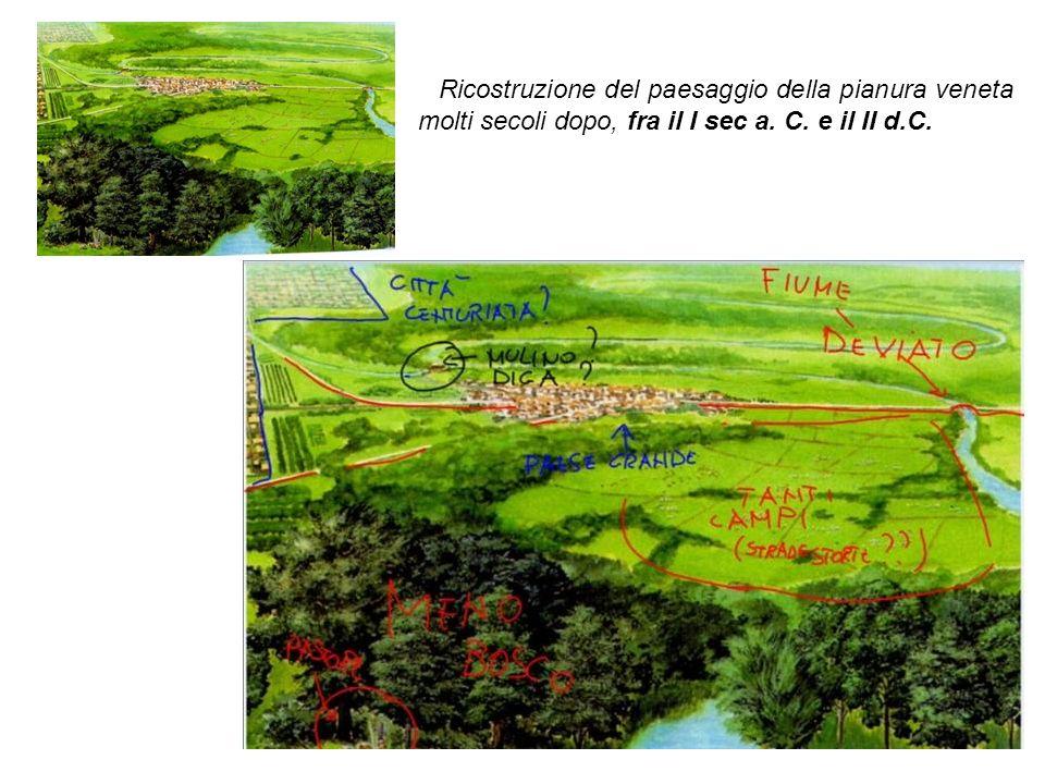 Ricostruzione del paesaggio della pianura veneta molti secoli dopo, fra il I sec a. C. e il II d.C.