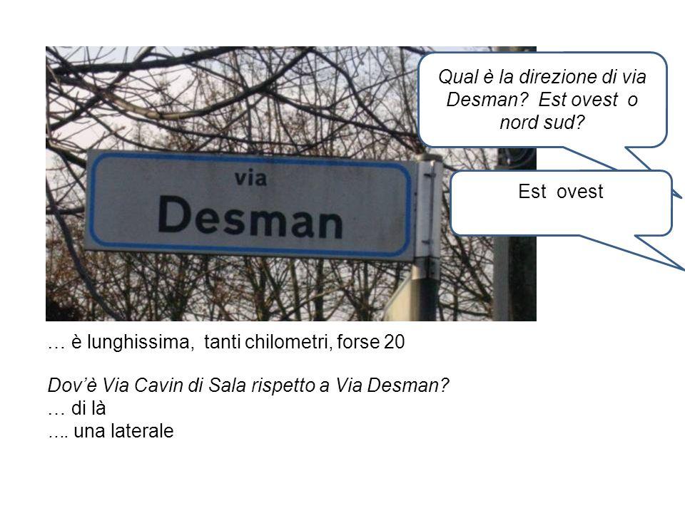 Qual è la direzione di via Desman Est ovest o nord sud