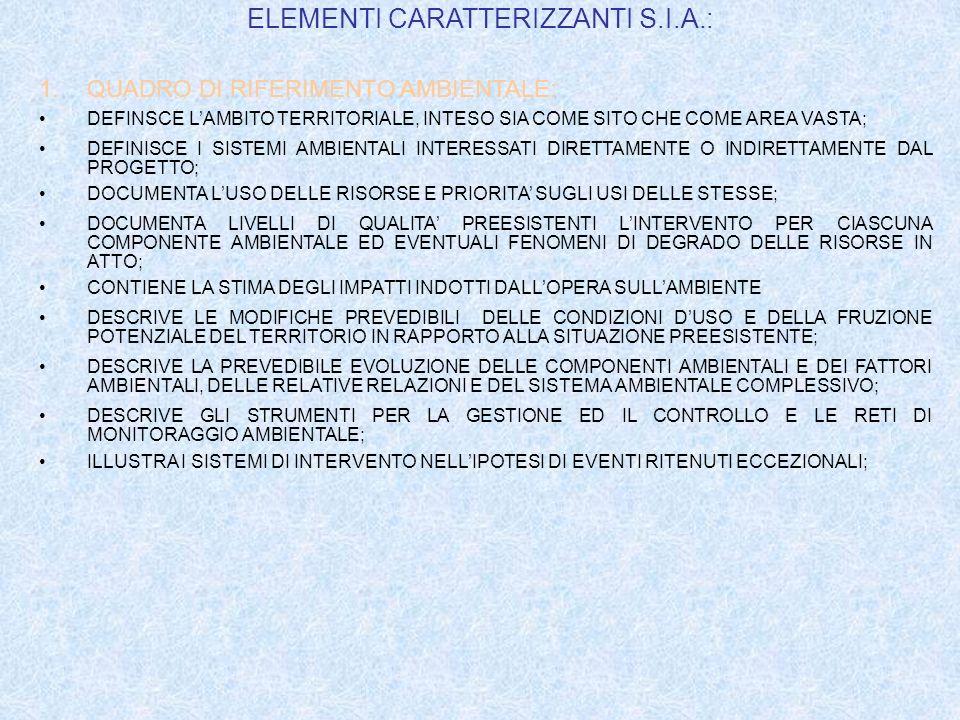 ELEMENTI CARATTERIZZANTI S.I.A.: