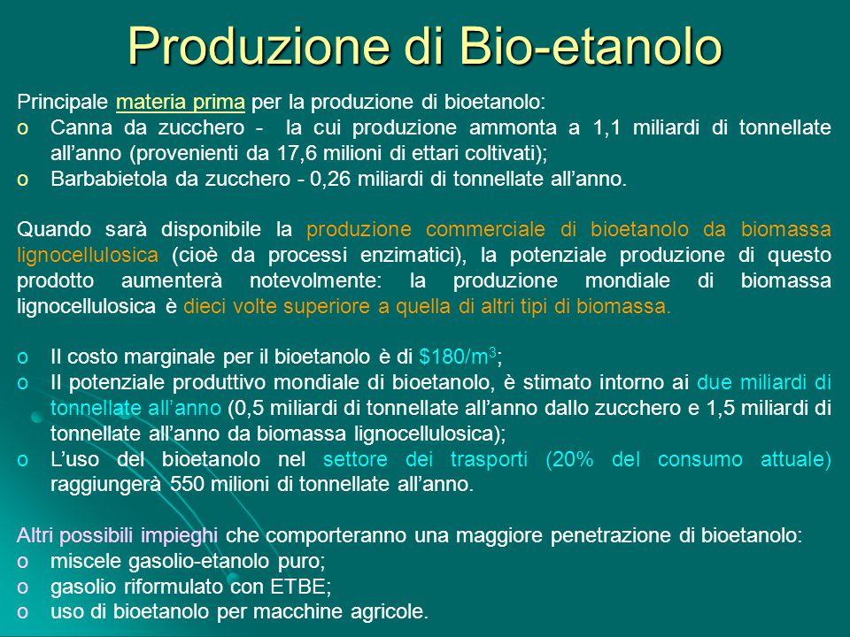 Produzione di Bio-etanolo