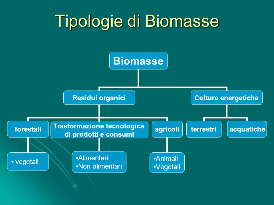 Tipologie di Biomasse