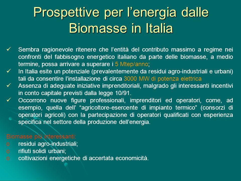 Prospettive per l'energia dalle Biomasse in Italia