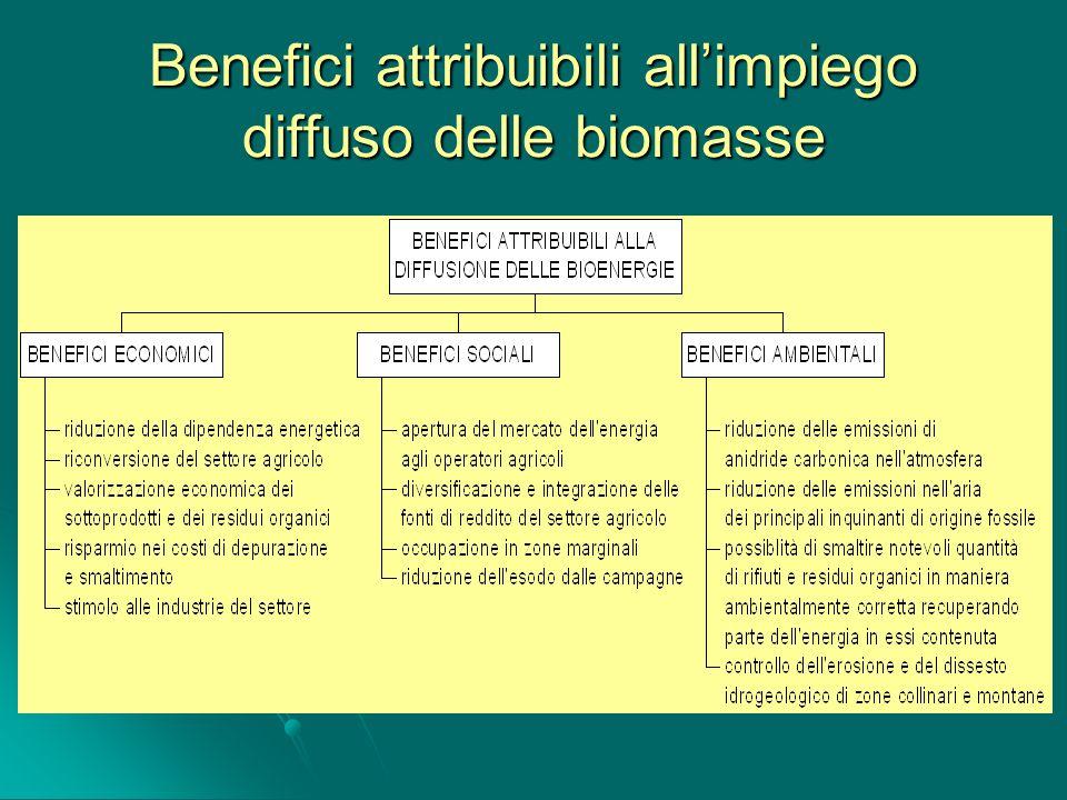 Benefici attribuibili all'impiego diffuso delle biomasse