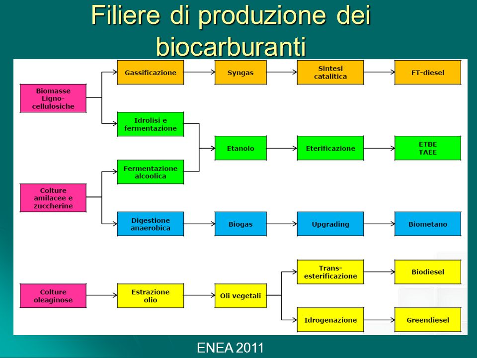 Filiere di produzione dei biocarburanti