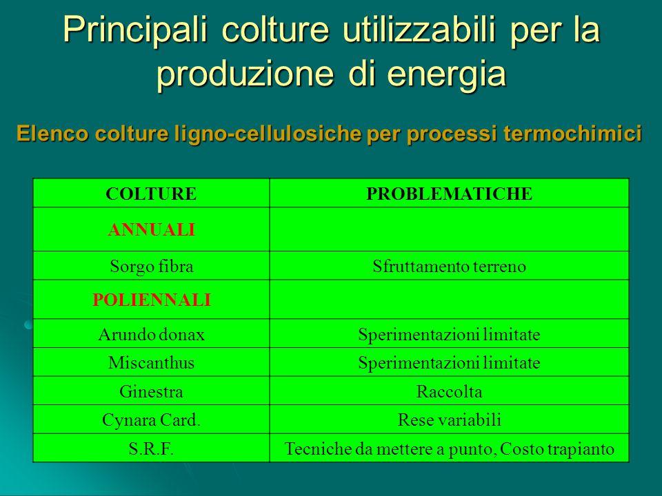 Principali colture utilizzabili per la produzione di energia