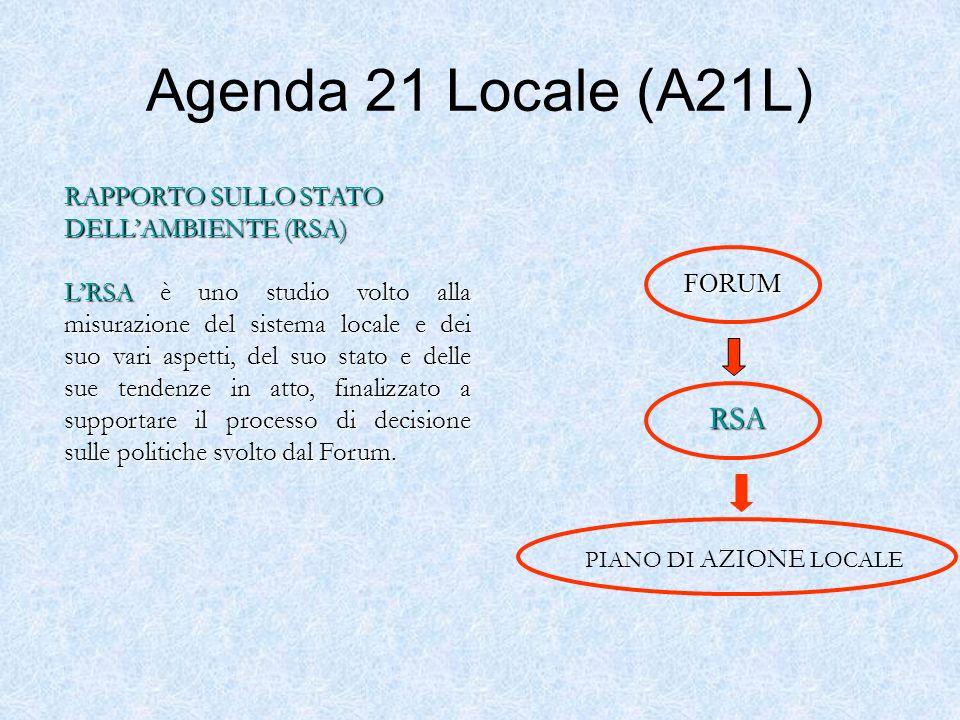Agenda 21 Locale (A21L) RSA RAPPORTO SULLO STATO DELL'AMBIENTE (RSA)