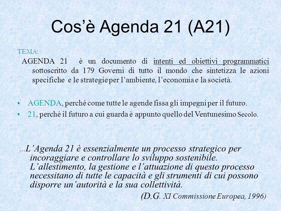 Cos'è Agenda 21 (A21) (D.G. XI Commissione Europea, 1996)