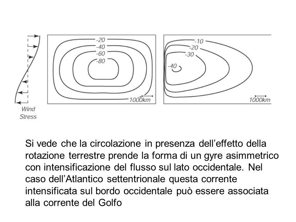 Si vede che la circolazione in presenza dell'effetto della rotazione terrestre prende la forma di un gyre asimmetrico con intensificazione del flusso sul lato occidentale.