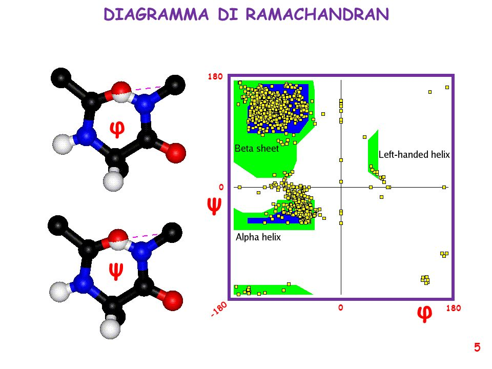 DIAGRAMMA DI RAMACHANDRAN