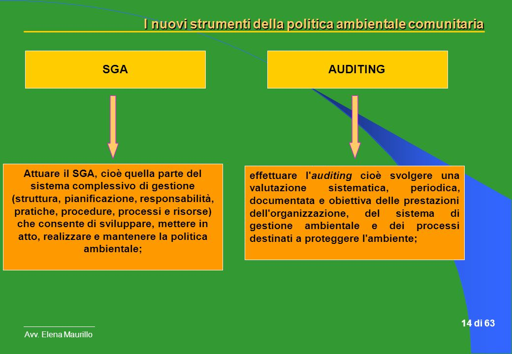 SGA AUDITING.