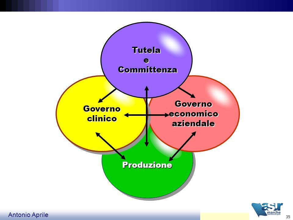 Tutela e Committenza Governo clinico Governo economico aziendale Produzione