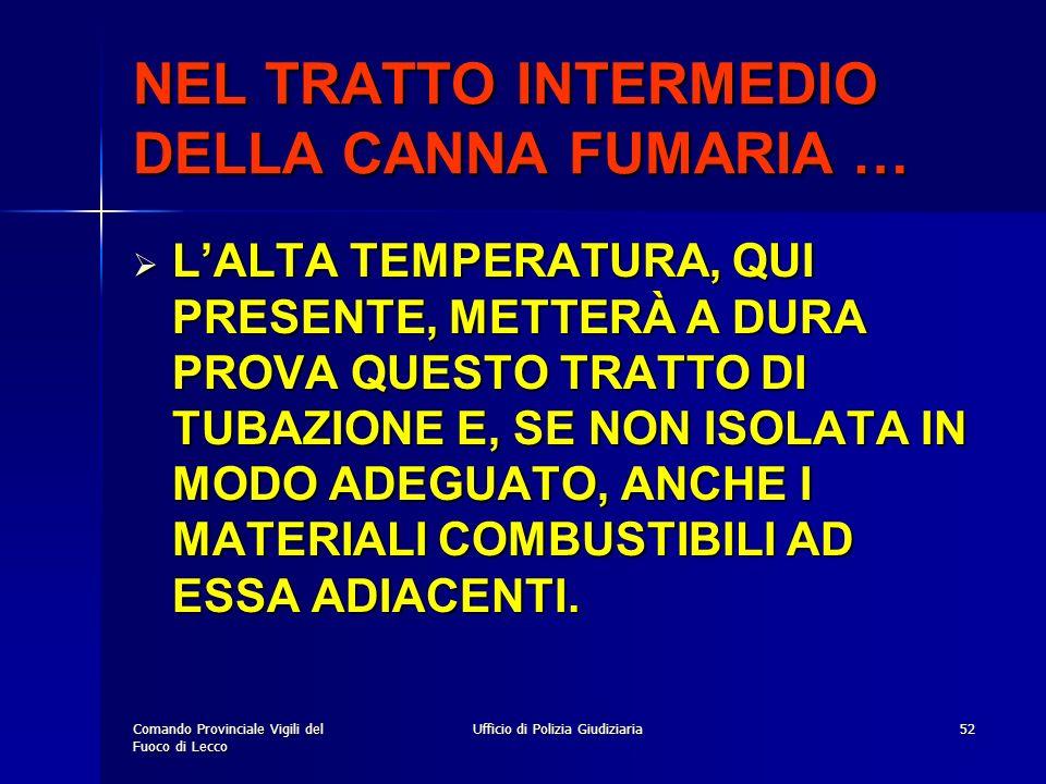 NEL TRATTO INTERMEDIO DELLA CANNA FUMARIA …