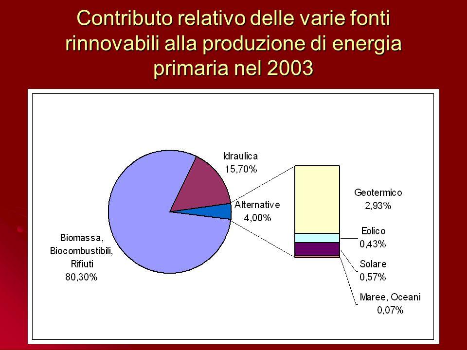 Contributo relativo delle varie fonti rinnovabili alla produzione di energia primaria nel 2003
