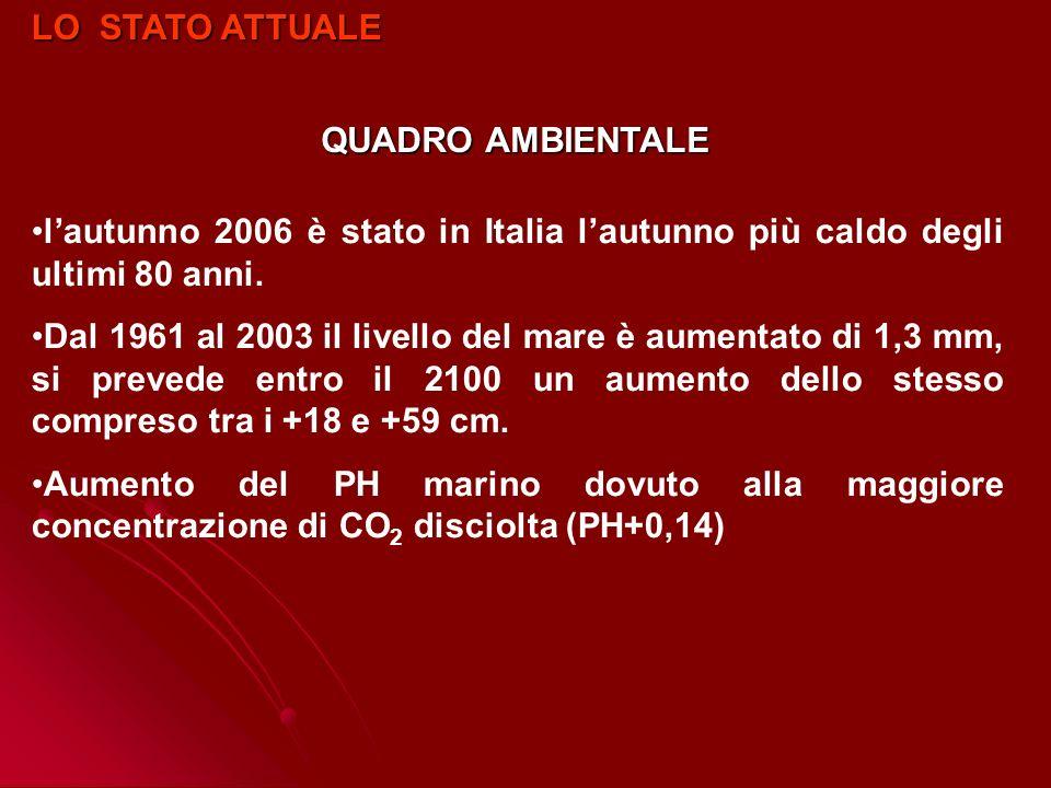 LO STATO ATTUALE QUADRO AMBIENTALE. l'autunno 2006 è stato in Italia l'autunno più caldo degli ultimi 80 anni.