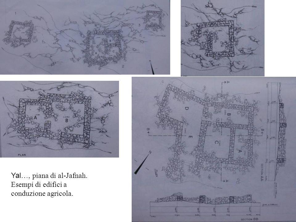 Yal…, piana di al-Jafnah. Esempi di edifici a conduzione agricola.