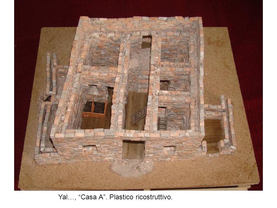 Yal…, Casa A . Plastico ricostruttivo.