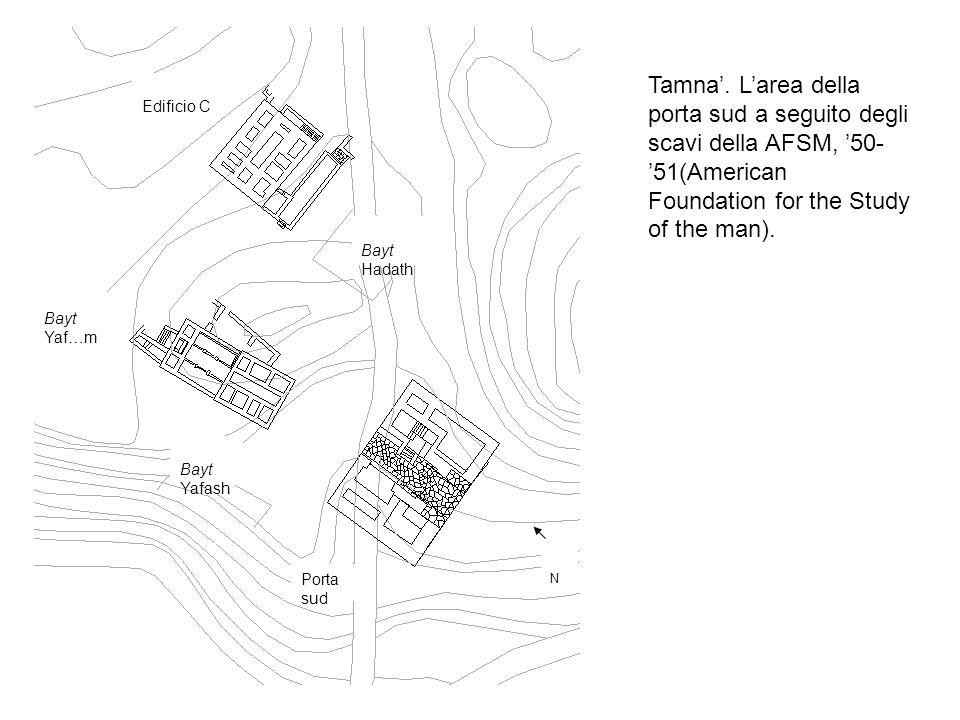 Tamna'. L'area della porta sud a seguito degli scavi della AFSM, '50-'51(American Foundation for the Study of the man).