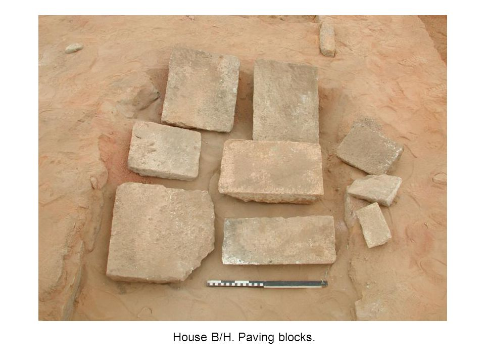 House B/H. Paving blocks.