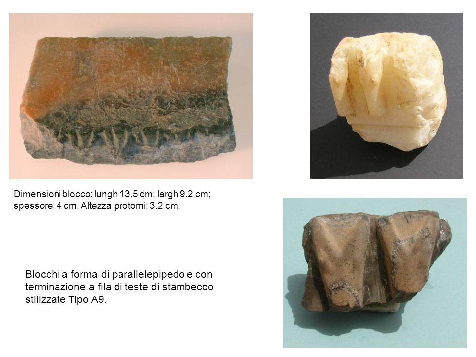 Dimensioni blocco: lungh 13. 5 cm; largh 9. 2 cm; spessore: 4 cm