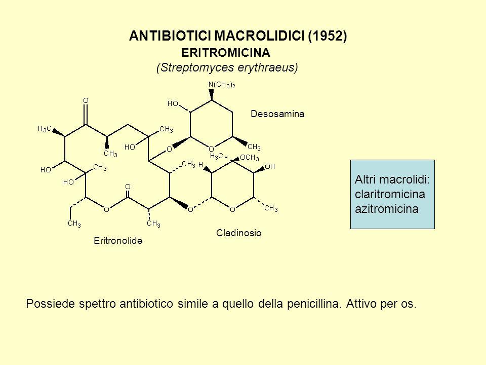 ERITROMICINA ANTIBIOTICI MACROLIDICI (1952) (Streptomyces erythraeus)