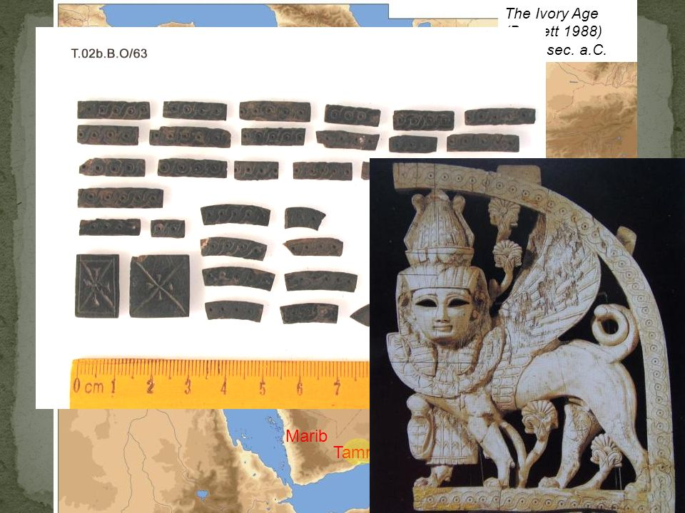 Marib Tamna The Ivory Age (Barnett 1988) IX-VII sec. a.C. Tell Halaf