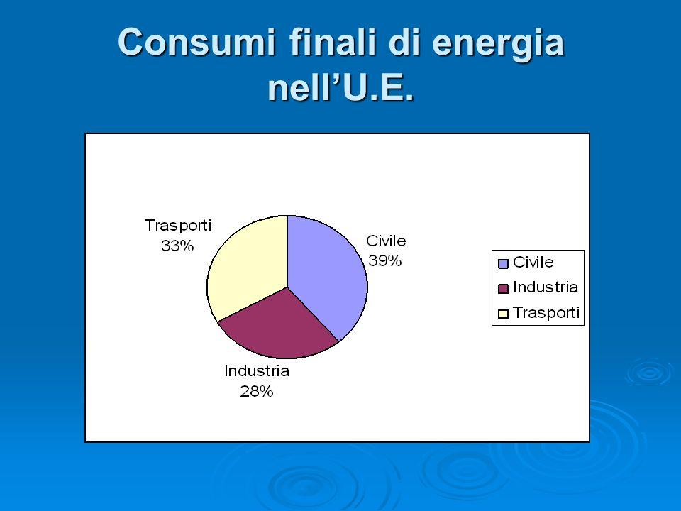 Consumi finali di energia nell'U.E.