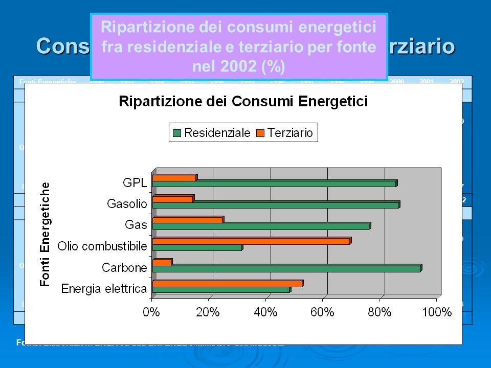 Consumi Energetici nel settore Terziario