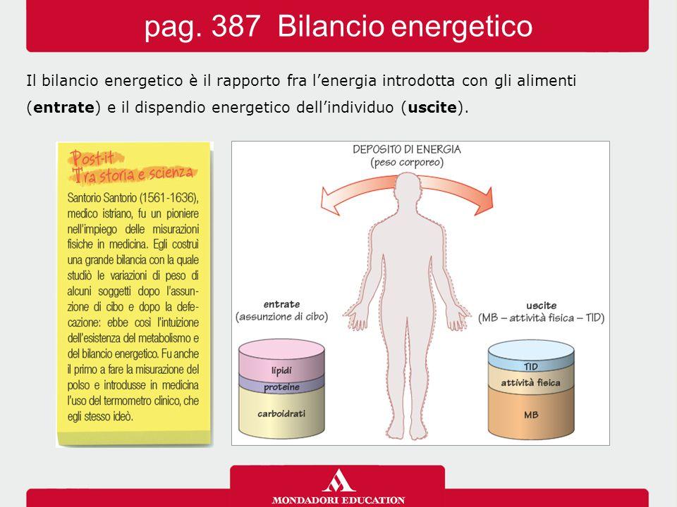 pag. 387 Bilancio energetico