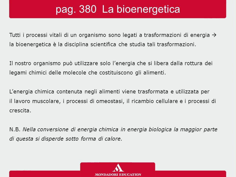 pag. 380 La bioenergetica Tutti i processi vitali di un organismo sono legati a trasformazioni di energia 